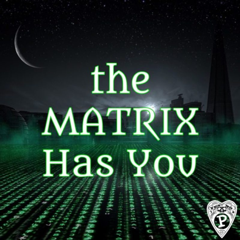 The-matrix-has-You-scaled